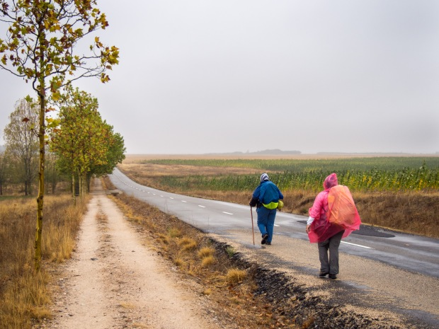 Day 19: El Burgo Ranero to Mansilla de las Mulas