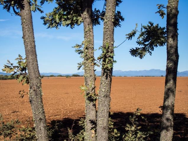 Day 22: San Martín del Camino to Astorga