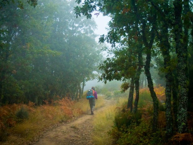 Day 24: Rabanal del Camino to Molinaseca