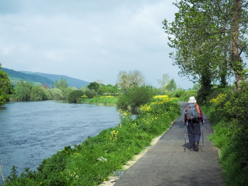 May15, to Clonmel