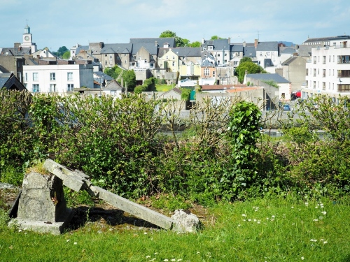 May 14, Carrick-on-Suir