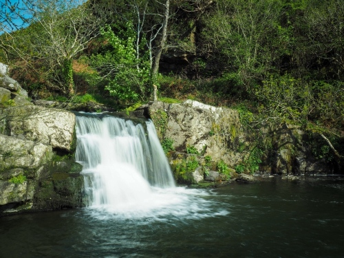 May 14, to Carrick-on-Suir