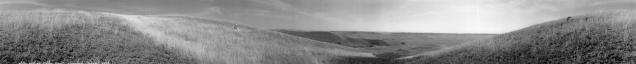 Alone with an Endless View, Grasslands National Park, Saskatchewan (from the series Grasslands)