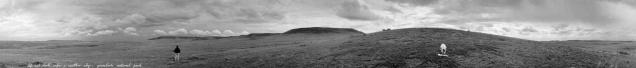 Life and Death Under a Restless Sky, Grasslands National Park, Saskatchewan (from the series Grasslands)