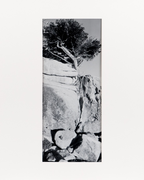 "Point Lobos, from the series ""Under Cassiopeia's Chair"" (1985), 7"" x 18"" original print on Oriental Seagull paper."