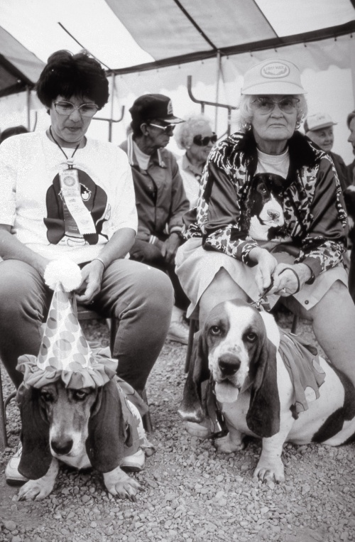 At the dog show. (from the Silver series)