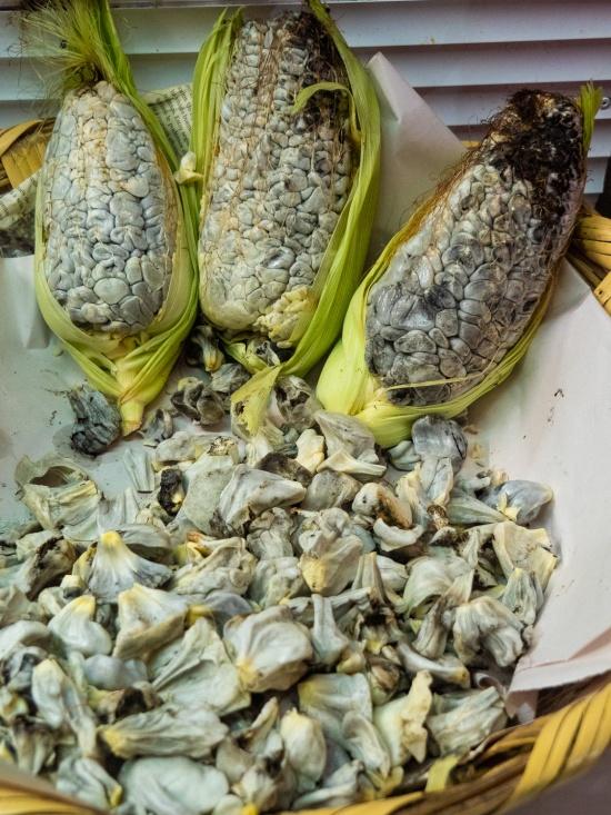 Huitlacoche (edible corn fungus)